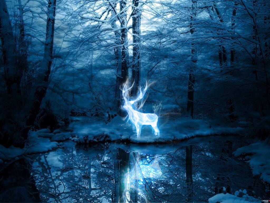 Image result for expecto patronum